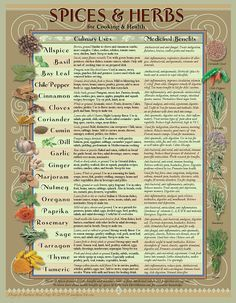 Healing Herbs and Spices Chart for the kitchen by AmalgamARTS, $4.75 hi-Res downloadable art. Instructions included.
