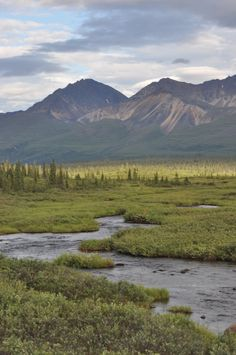 A meandering river at sunset near Denali National Park in Alaska.