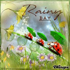 Good Morning Rainy Day, Cozy Rainy Day, Good Morning Friends, Rainy Days, Good Night, Rainy Day Quotes, Kitsch, Friendship Wishes, Rain Gif