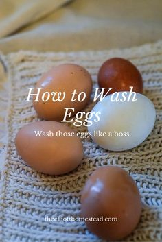 How to Wash Eggs More