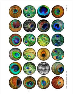 Peacock Feather - 2 Digital Collage Sheets CG-452 - 1.5 inch (or smaller) circles - for Resin Pendants, Bottle Caps. $4.20, via Etsy.