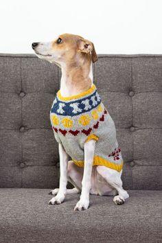 Dog Sweater Pattern, Knit Dog Sweater, Dog Sweaters, Sweater Knitting Patterns, Hand Knitting, Crochet Patterns, Fox Scarf, Cute Dogs, Fun Dog