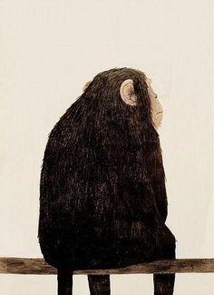 met ta capuche petit singe et ça ira mieux :) Jon Klassen Art And Illustration, Animal Illustrations, Jon Klassen, Branch Art, Monkey Art, Art Graphique, Oeuvre D'art, Illustrators, Design Art