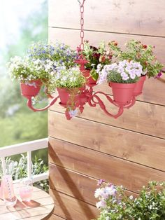 Wir verschönern Ihre Blumentöpfe! ALLE IDEEN >>>