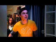 Sheldon Cooper - Stupid Bird