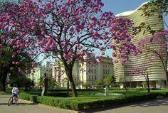 Praça da LIberdade     Belo Horizonte - Brazil