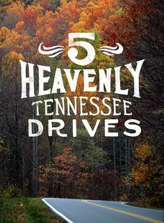5 Heavenly Tennessee Drives. Request your copy of the 2016 Tennessee Vacation Guide to learn more.