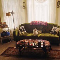 Ava Velvet Tufted Sleeper Sofa - Urban Outfitters