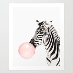 Funny zebra with pink bubble gum Art Print