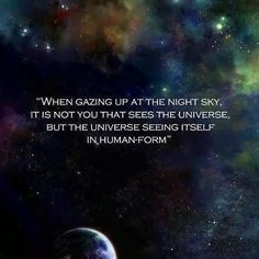 The Universe seeing itself....