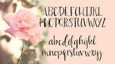 11 Hand Drawn Fonts by On the Spot Studio - MightyDeals