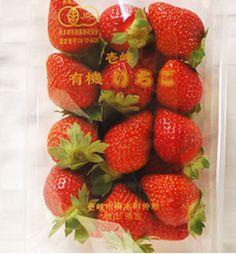 無農薬 有機栽培いちご 苺 口の中に甘く瑞々しい果汁が広がります。朝一番に収穫した新鮮ないちごをお届け。有機野菜・無農薬野菜の宅配・通販 ぶどうの木