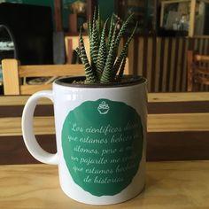 #SaborCanelaMx #postreria #cafédeveracruz #frases #cactus te esperamos!