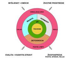 GENIÁLNE RECEPTY | Dr. Buzgi Chart