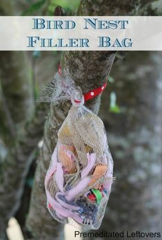 Bird Nest Filler Bag- Teach kids about birds and recycling with these fun scrap bags. Hang them outside and see how many feathered friends they attract!