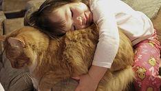 Así es como luce el amor. | 38 fotos que prueban que los gatos tienen un corazón de oro