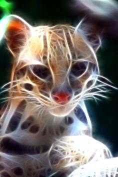 Stunning Fractal Ocelot.