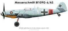 A Bf109G-6/AS from 9./JG1 based at Anklam in the autumn of 1944. The all RLM 76 Bf109G-6/AS fighters were used by III./JG1 in their role as topcover escorts for the heavily armed Fw190's of the Geschwader tasked with attacking the 8:th airforce bombers. The antenna is mounted on the fuselage, an indication that this aircraft was originally fitted with a standard canopy. An indication that this could be a regular Bf109G-6 converted to G-6/AS standards. Profile & text by Anders Hjortsberg
