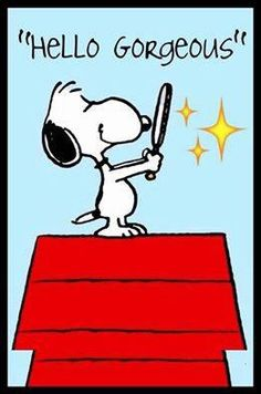 """""""Hello Gorgeous"""", Snoopy is always so handsome ; )"""