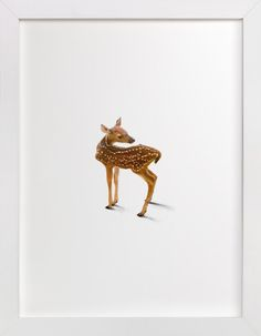 A Deer Friend by Andrew McClintock at minted.com