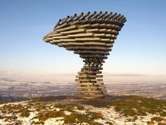 Really Weird Musical Instruments: SINGING RINGING TREE