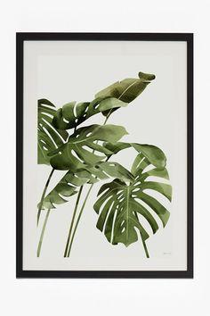 large framed tropical leaf print 50x70