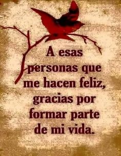 ENTRE TELAS: FRASE DE HOY Gods Love Quotes, Thank You Quotes, Wisdom Quotes, Life Quotes, Cute Spanish Quotes, Spanish Inspirational Quotes, Insightful Quotes, Empowering Quotes, Good Morning Funny