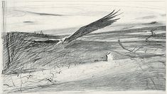 wyeth vertigo - Google Search