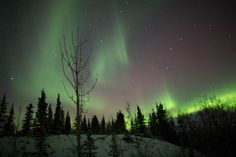 Aurora Boreal- Veja a aurora filmada e sinta a paz que ela nos traz.
