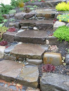 Stone Steps Mosaic Garden Design Succulents planted along the sides