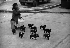 Werner Bischof MEXICO. Mexico City. In front of the bullfighting arena. 1954.