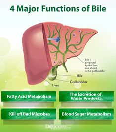 The gallbladder plays a critical role in the digestive system. This article discusses the functions of bile and symptoms of gallbladder disease. Function Of Bile, Foods For Liver Health, Thyroid Health, Mental Health, Fatty Acid Metabolism, Abdominal Bloating, Abdominal Pain, Low Stomach Acid, Amigos