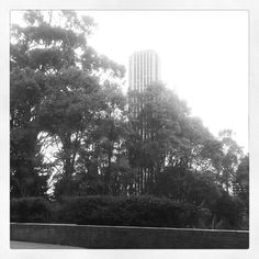 Torre de Colpatria desde barrio la Macarena #InstagramYourCity #Bogota #smwbog @smwbog #Instagtam #SocialTravel - @juanpabloardila- #webstagram