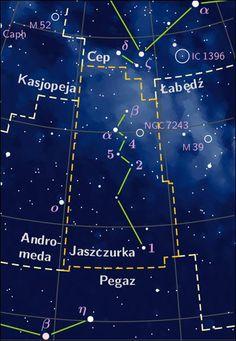Gwiazdozbiór Lacerta