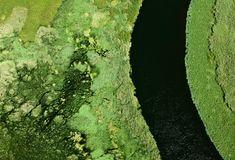 Kalahari Revisited: Zack Seckler's 'Botswana' Photography Exhibition Photography Exhibition, Aerial Photography, Wildlife Photography, Landscape Photography, Photography Tips, House Photography, Contemporary Photography, Digital Photography, Colossal Art