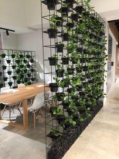 Enquire Now For Professional Green Wall Design & Installation In Sydney, Melbourne, Brisbane & Gold Coast Vertical Green Wall, Vertical Garden Design, House Plants Decor, Plant Decor, Indoor Garden, Outdoor Gardens, Balcony Garden, Jardim Vertical Diy, Green Wall Art