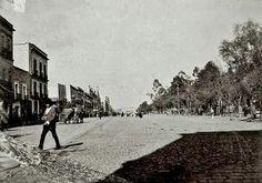 La antigua calle del Calvario, hoy Av. Juarez, a la derecha el lado sur de la Alameda. ca. 1897