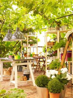 Now I want a greenhouse.  And I would set up a comfy cot and sleep in it.      Trädgårdstider | Redaktionen | inspiration från IKEA
