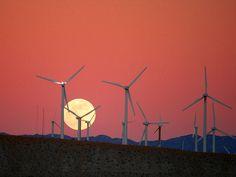 windmills and moonrise