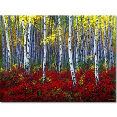 Crimson Forest - aspen birchtree art by Jennifer Vranes