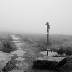 The path to knowhere - Day 159, Year 2 by purplemattfish, via Flickr