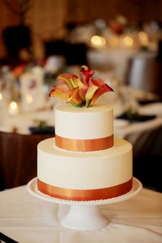 Orange, Coral and Blue Utah Mountain Wedding - Fab You Bliss Orange Wedding Themes, Utah, Wedding Inspiration, Wedding Ideas, Wedding Cakes, Stuffed Peppers, Desserts, Mountain Weddings, Navy