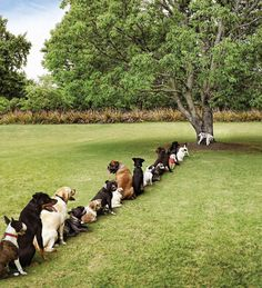 Waiting in line for the bathroom...