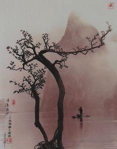 Don Hong-Oai - Photographer