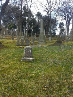 Can a graveyard be romantic? Oak Hill Cemetery in georgetown, Washington DC. Go in springtime, when wild flowers are blooming!