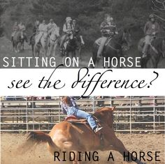 AMEN...tired of getting advice from people that rode a horse once in 1982 at a dude ranch......
