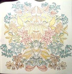 Coloriage jardin secret 7