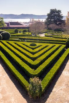 The Royal Palace and Gardens of Ajuda 91 Days, Lisbon, Travel Guide, Rest, Outdoor Decor, Lisbon Portugal, Travel Guide Books