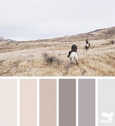 today's inspiration image for { wander tones } is by . thank you, Myla, for another incredible image share! Bedroom Colour Palette, Colour Pallette, Bedroom Colors, Scheme Color, Colour Schemes, Color Combos, Palettes Color, The Ocean, Design Seeds