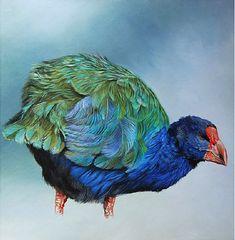 craig Platt nz artista pájaro